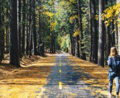 運動不足の解消法は歩くことが大切!便秘改善にも役立つスッキリ習慣とは?の画像