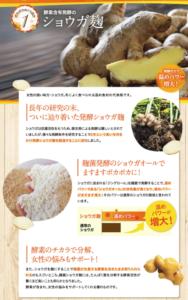 ショウガ麹の画像