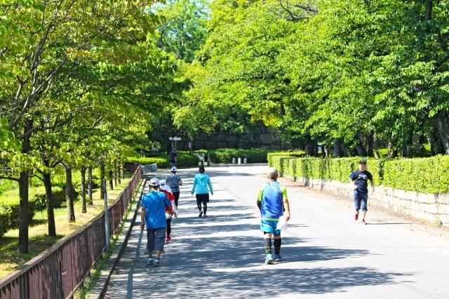 脂肪を減らす運動の習慣の画像